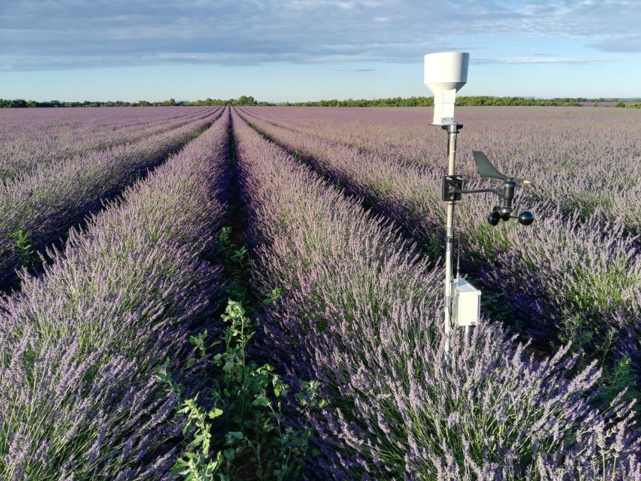 lavande-solutions-agricultures